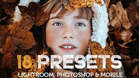 دانلود پریستهای لایت روم بنام Bjorndale Presets - Desktop & Mobile