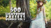 دانلودپکیج 500 پریست لایت روم CreativeMarket 500 Premium Lightroom Presets