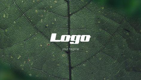 دانلود پروژه آماده پریمیر : تیتراژ  Logo Photo Intro
