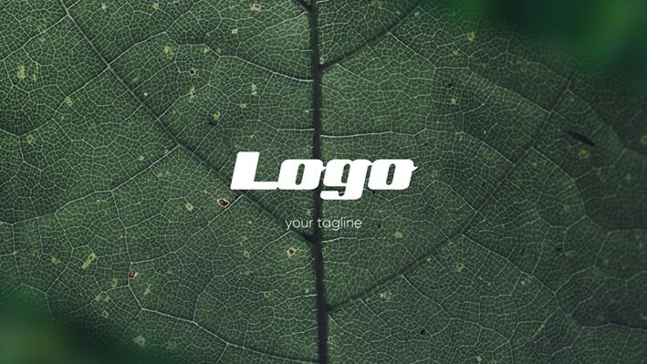 دانلود پروژه آماده پریمیر  تیتراژ  Logo Photo Intro