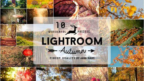 دانلود 10 پریست لایت روم فوق حرفه ای پاییزی : Autumn Vintage Lightroom Presets