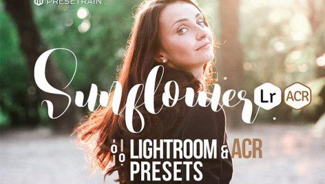 دانلود ۱۴ پریست لایت روم فوق حرفه ای : Sunflower Lightroom ACR Presets
