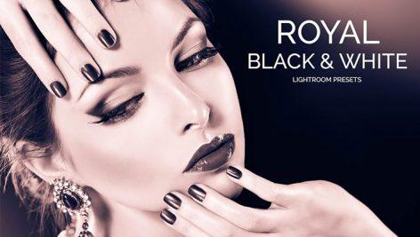 دانلود 20 پریست لایت روم حرفه ای : Royal Black White Lightroom Presets