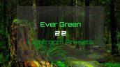 دانلود 20 پریست لایت روم Ever Green 22 Lightroom Presets