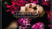 دانلود 65 پریست لایت روم Zinepress Lightroom Presets