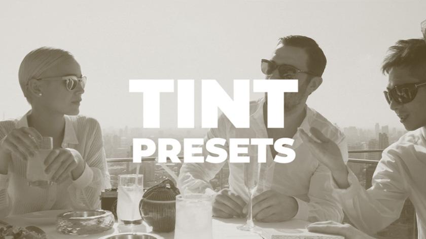 دانلود پریست رنگی آماده پریمیر  motionarray Tint Presets premiere pro