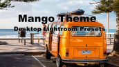 دانلود 5 پریست لایت روم دسکتاپ : Neo Mango Theme Desktop Lightroom Presets