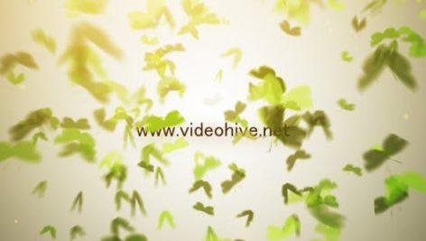 دانلود پروژه آماده افترافکت نمایش لوگو videohive Butterfly Logo