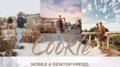 دانلود 4 پریست لایت روم برای دسکتاپ و موبایل : Cookie