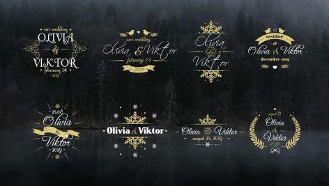 دانلود 8 تایتل آماده پریمیر مخصوص عروسی : Elegant Wedding Titles