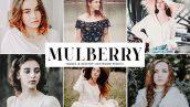 دانلودپریست لایت روم دسکتاپ و موبایل : Mulberry Mobile Desktop Lightroom Presets