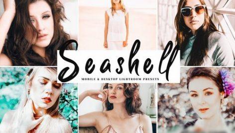 دانلود پریست لایت روم و Camera Raw و اکشن: Seashell Mobile Desktop Lightroom Presets