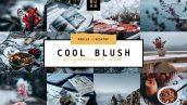 دانلود پریست رنگی لایت روم دسکتاپ و موبایل : Cool Blush Lightroom Presets Pack