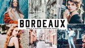دانلود پریست لایت روم و Camera Raw و اکشن: Bordeaux Mobile Desktop Lightroom Presets
