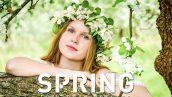 دانلود 50 پریست آماده بهاری برنامه لایت روم : Spring Lightroom Presets