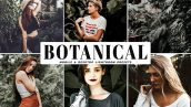 دانلود پریست لایتروم و Camera Raw و اکشن: Botanical Lightroom Presets Pack