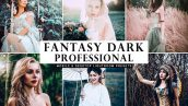 دانلود پریست لایتروم و Camera Raw و اکشن: Fantasy Dark Professional Presets