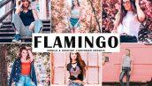 دانلود پریست لایتروم و Camera Raw و اکشن: Flamingo Pro Lightroom Presets