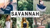دانلود پریست لایتروم و Camera Raw و اکشن: Savannah Lightroom Presets Pack