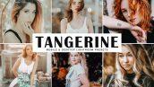 دانلود پریست لایتروم و Camera Raw و اکشن: Tangerine Lightroom Presets Pack