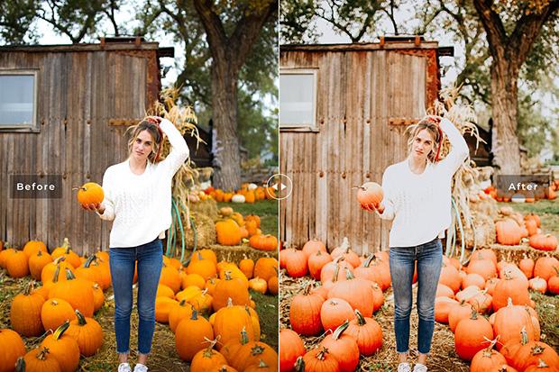 دانلود پریست لایت روم و Camera Raw و اکشن: Pumpkin Lightroom Presets Pack