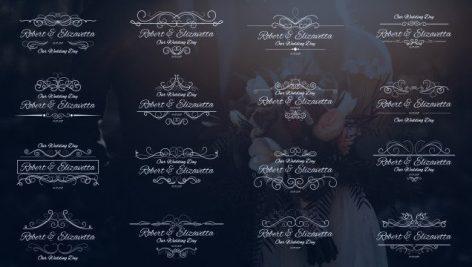 دانلود ۱۶ تایتل آماده متن پریمیر مخصوص عروسی : Wedding Calligraphic Titles