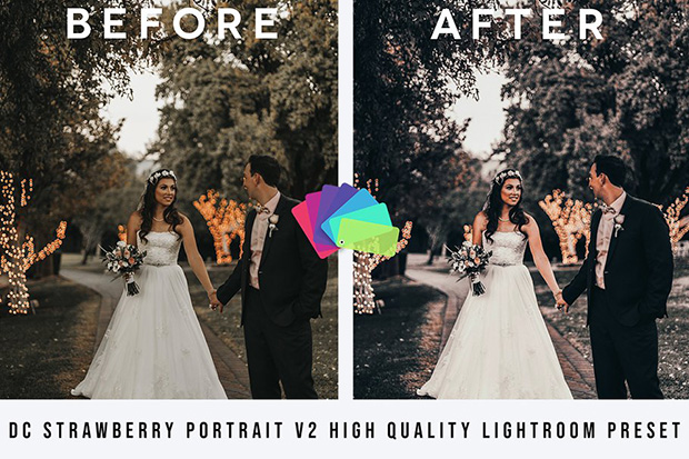 دانلود مجموعه پریست لایت روم دسکتاپ : DC Strawberry Portrait Lightroom
