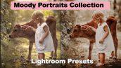 دانلود مجموعه 21 پریست لایت روم : Moody Portraits Collection Lightroom Presets