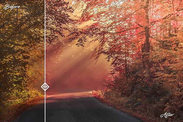 دانلود پریست لایت روم 50 عددی دسکتاپ : Premium Landscape Lightroom Presets