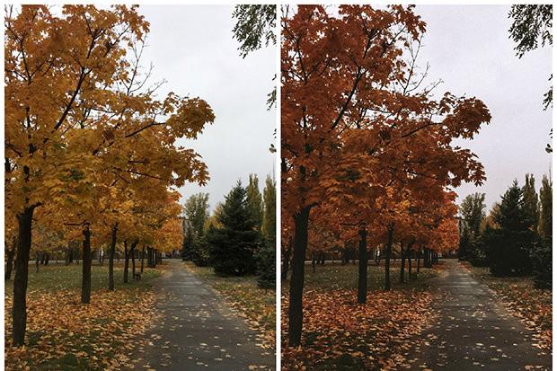 دانلود پریست لایت روم موبایل : تم پاییزی Lightroom Mobile Autumn Preset