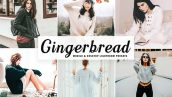 دانلود پریست لایت روم و Camera Raw و اکشن Gingerbread Mobile Desktop Lightroom Presets