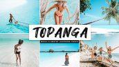 دانلود پریست لایت روم و Camera Raw و اکشن: Topanga Mobile Desktop Lightroom Presets