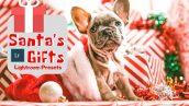 پریست لایت روم دسکتاپ و موبایل تم کریسمس Santa's Gifts Lightroom Presets
