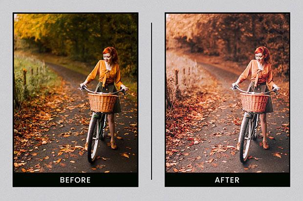 پریست لایت روم دسکتاپ و موبایل تم برگ پاییزی Autumn Leaves Lightroom Presets