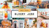 پریست لایت روم دسکتاپ و موبایل تم ماه گل Bloomy June Lightroom Preset