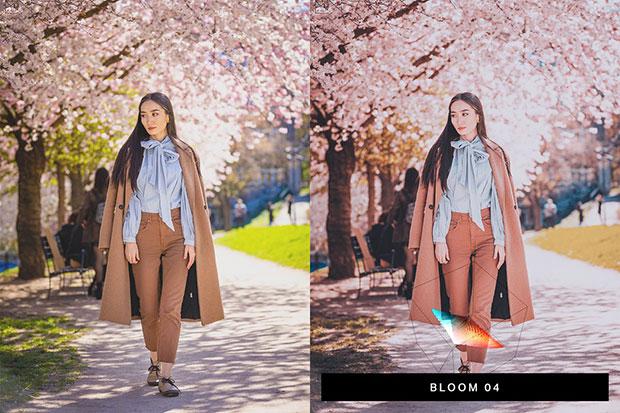 پریست لایت روم و لات رنگی تم صورتی Sakura Lightroom Presets and LUTs