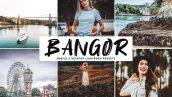 پریست لایت روم دسکتاپ و موبایل تم بانگور Bangor Mobile And Desktop Lightroom Presets