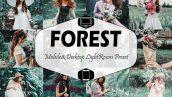 پریست لایت روم دسکتاپ و موبایل تم جنگل Forest Mobile And Desktop Lightroom Presets