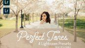پریست لایت روم دسکتاپ و موبایل تم رنگ حرفه ای Perfect Tones Lightroom Presets