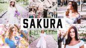 پریست لایت روم و Camera Raw و اکشن تم ساکارا Sakura Mobile And Desktop Lightroom Presets