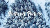 دانلود 20 پریست لایت روم تم رنگ طبیعت Natural Nature Lightroom Presets