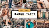پریست لایت روم دسکتاپ و موبایل تم رنگ میوه انبه Mango Lightroom Presets Bundle