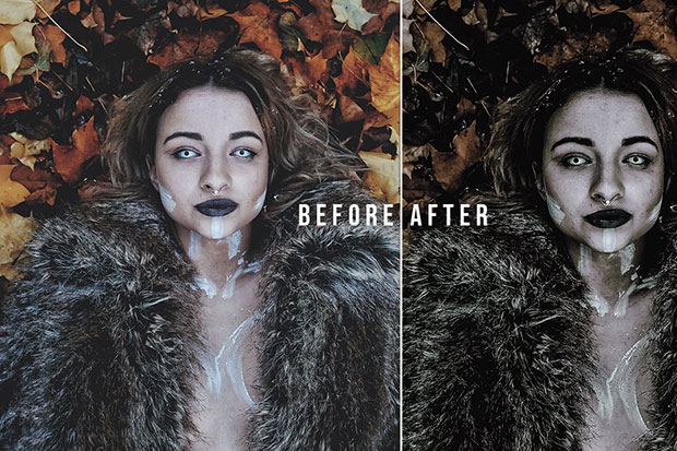 پریست لایت روم دسکتاپ و موبایل سینمایی تم فیلم ترسناک HORROR FILM Lightroom Presets