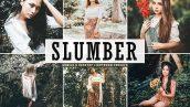 پریست لایت روم و Camera Raw و اکشن تم رنگ جنگل Slumber Mobile And Desktop Lightroom Presets