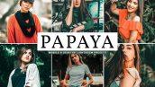 پریست لایت روم و Camera Raw و اکشن تم رنگ گیاهان Papaya Mobile And Desktop Lightroom Presets