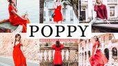 پریست لایت روم و Camera Raw و اکشن تم شارپنس Poppy Mobile And Desktop Lightroom Presets