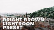 پریست لایت روم دسکتاپ و موبایل تم پررنگ Bright and Brown Lightroom Preset