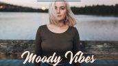 دانلود 40 پریست لایت روم و براش لایتروم Moody Vibes Presets