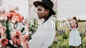 پریست لایت روم دسکتاپ و موبایل بهار پر جنب و جوش Vibrant SPRING Lightroom Presets