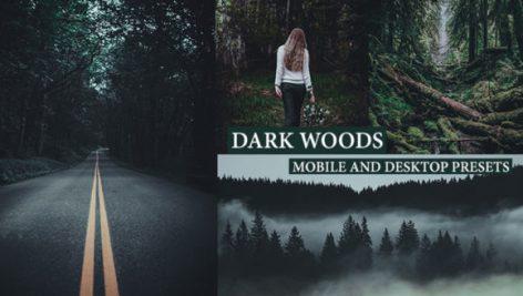 پریست لایت روم دسکتاپ و موبایل سینمایی Cinematic Dark Woods Lightroom Presets